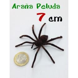 Arana alambre aterciopelada marron 7 cm