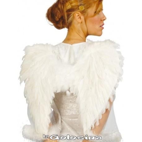 Alas de pluma ANGEL