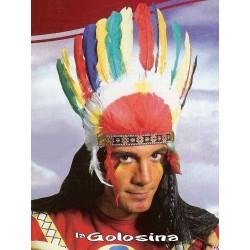 Penacho de indio